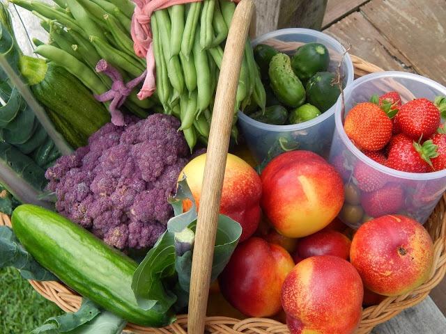 Eat Healthy Organic Produce