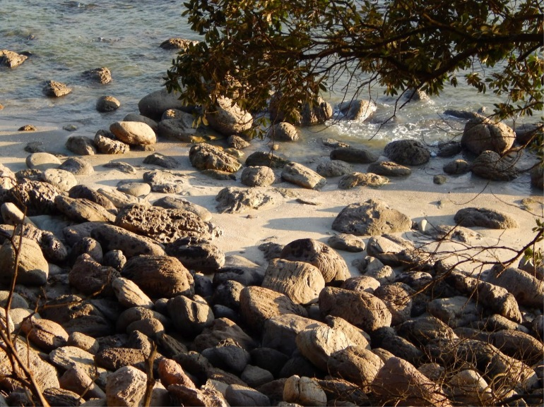 A glimpse from the track, of the beach boulders.